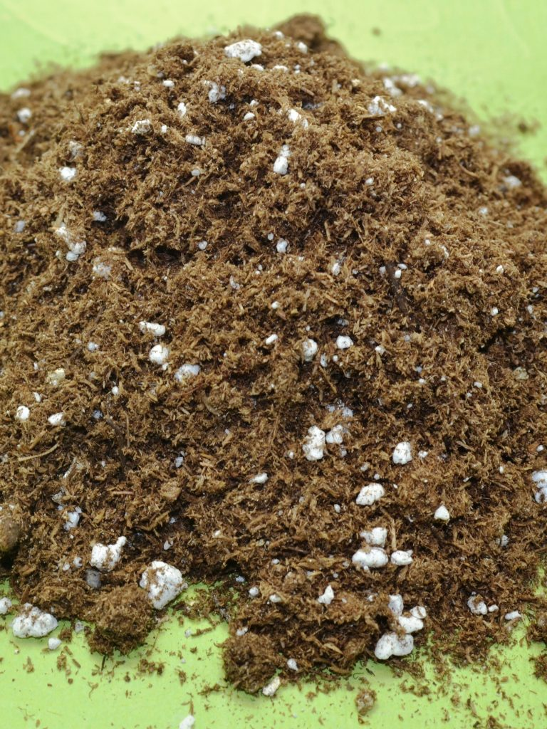 African Violet Soil / Potting Mix