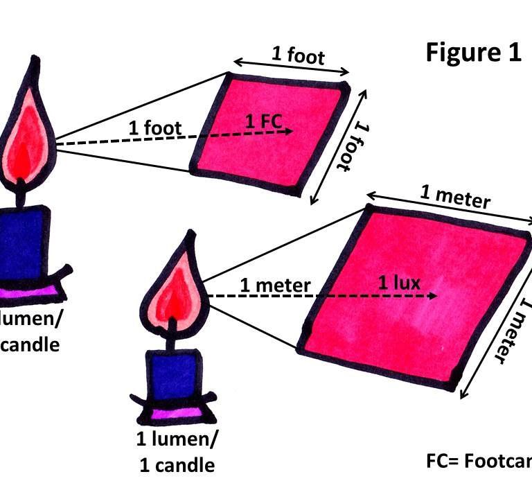 Artificial Lighting For African Violet Plants: Part I Fluorescent Lighting